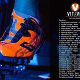 VIDA VIT 2018 - Sesión Conjunta VITaVIT