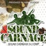 Asian Grandfather - Sound Carnage Dj Comp Presented by Xeba Studios