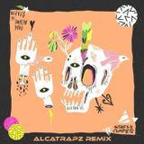 Styles Complete Wave feat Duncan Davis Alcatrapz Remix