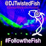 @DJTwistedFish #DeepMelodicHouse