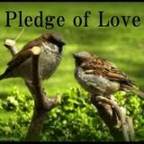 Pledge Of Love