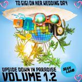 Upside Down In Paradise Volume 1.2