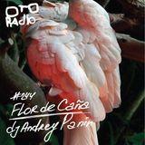 Podcast #244 / Flor de Cana / by dj Andrey Panin
