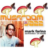 Mark Farina- Mushroom Jazz mixtape series Vol. 14(?)- Fall 1994