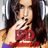 R3DBIRD - Turbulence 75