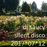 Silent Disco @ Peninsula Park 2017*07*12