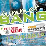 Summer Bang - Best Of Summer Bang's Electric Area - THE MIX (DJ DAYN)