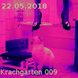 "Krachgarten Podcast 009: "" Die Katze hat neun Leben"""