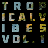 Tropical Vibes Vol. 1 (Live in The 78)