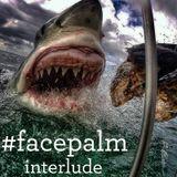 #Facepalm - Interlude