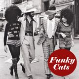 Funky Cats - Essential Dance Mix 7