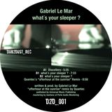 gabriel le mar: what´s your sleeper ?-EP in_the_mix - d2d_001