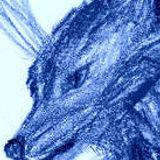 Ghosts N Stuff (Fapple Jax Remix)