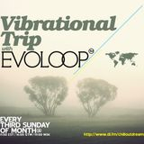 EvoLoop - Vibrational Trip 018 (19-02-2012)