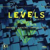 Levels Riddim Medley