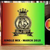 DJ QT - JUNGLE MIX MARCH 2015