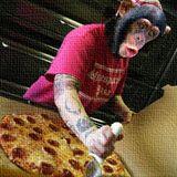 M22: Pizza Hippie Monkey