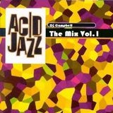 Acid Jazz - Remembering the scene Vol.1