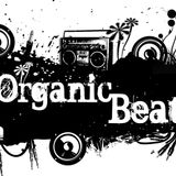 Organic Beats Party Hip Hop Mix from 2001