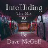 Into Hiding #3