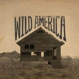 L&D005 - Wild America - A mix by James Curry