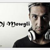 DJMOWGLI CD 1 SUMMER