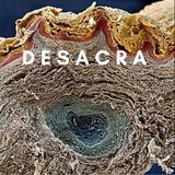 Desacra - Episode 08