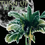 11.18.2014: TRoutski - TURN UP DI TING ~ Warm-up Mix