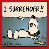 Roemer - Surrender
