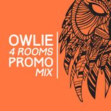 Owlie @ 4 Rooms