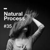 Natural Process #35