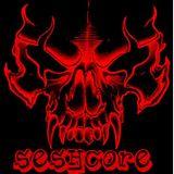 Seshcore ! hardcore - terror