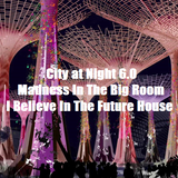 City at Night 6.0 - Madness In The Big Room - I Believe In The Future House