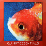Quinntessentials Season 2 Episode 5 - Big Fish Theory by Vince Staples (feat. Mark Guilfoyle)