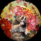 Lucius Lokovich - Samsara - Continuum mix