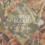 Surfer Blood Interview