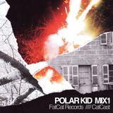 FatCat Records Podcast - Polar Kid Mix