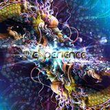 DJ Tuatara - The Experience Festival - 2013