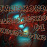 DJ Anakonda - Hardtechno Underground 01