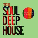 Dj McMaxi - Vocal Soul Deep House