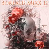 Borealis MixX 12.31