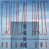 CRITICAL BASS VOL.1 // Mixed by Lady Feelion