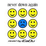 Never Down Again