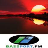 Stand Alone Complex #4  BassPort FM