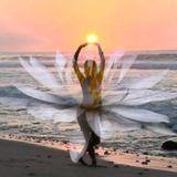 KOX_flying_bird_06_11_14
