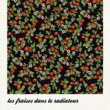 les fraises dans le radiateur #5 - Rencontre avec Joris Mathieu