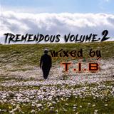 Tremendous Vol.2