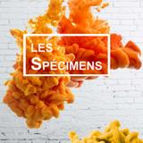 Les Spécimens - Émission du 26 octobre 2017