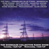 THE SHOEGAZE COLLECTIVE RADIO SHOW ON DKFM - SHOW 49 - 11-29-17