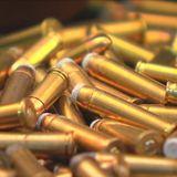La directive européenne sur les armes à feu presentée par Andreea - WunderParlement - Europhonica
